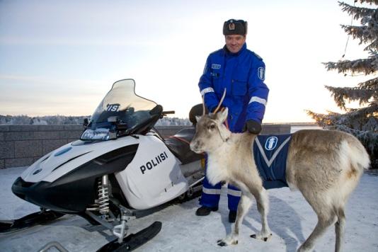 Reindeer Police